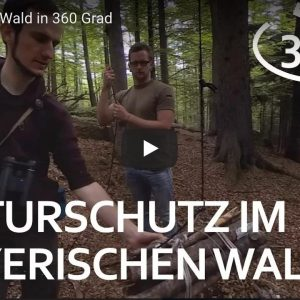 360° Virtual Reality    Naturschutz im Bayerischen Wald